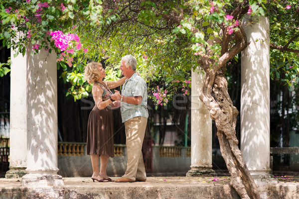 Happy senior couple dancing latin american dance for fun Stock photo © diego_cervo