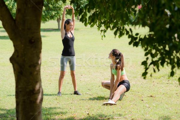 Stok fotoğraf: Spor · güzel · kadın · arkadaşlar · rahatlatıcı · jogging