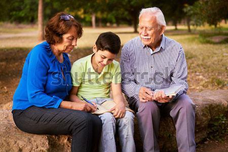 Großeltern Enkel Studium Hausaufgaben Senior Stock foto © diego_cervo