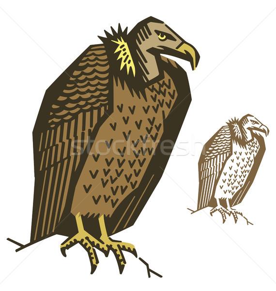 Dögkeselyű madár illusztráció vektor állat erős Stock fotó © digiselector