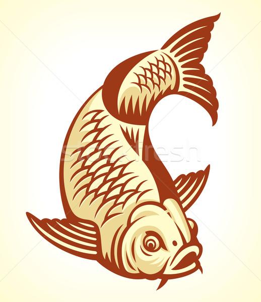 Carp Fish Stock photo © digiselector