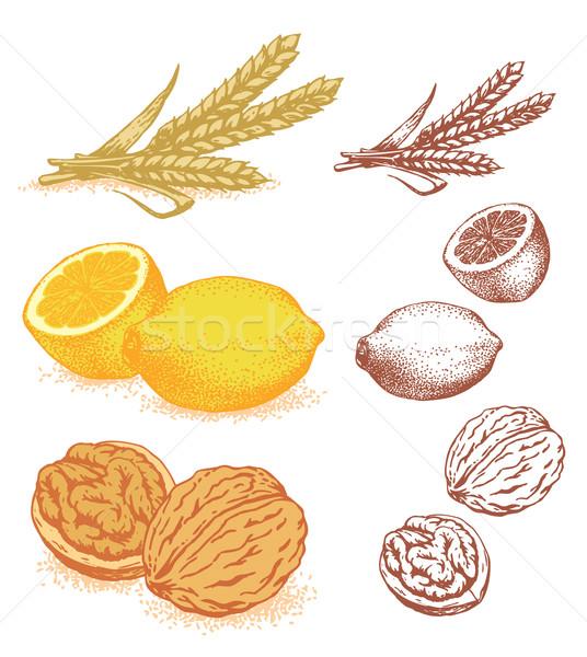Grain, lemons, walnuts Stock photo © digiselector