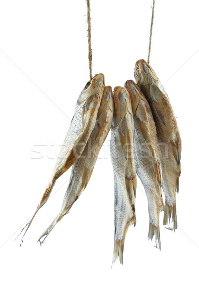 Five dried sea roach fishes on the rope Stock photo © digitalr
