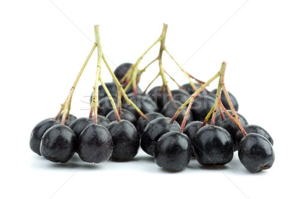 Az siyah yalıtılmış beyaz meyve Stok fotoğraf © digitalr