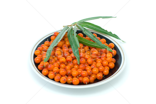 Saucer filled with sea-buckthorn berries and some leaves Stock photo © digitalr