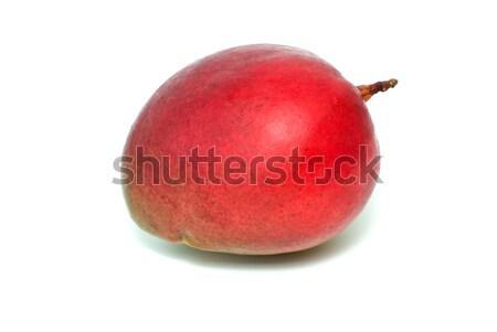 Single red mango fruit Stock photo © digitalr
