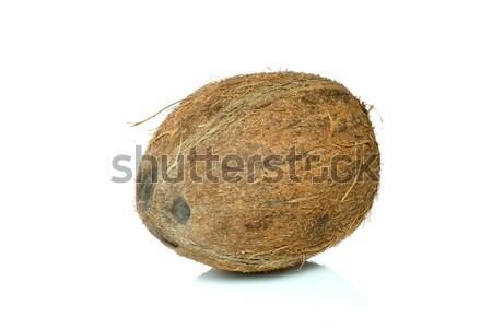 Single coconut Stock photo © digitalr