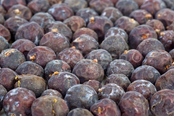 Zioła suszy wysoki jagody streszczenie płytki Zdjęcia stock © digitalr