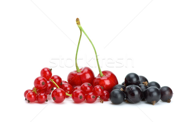 Redcurrants,blackcurrants and red cherries Stock photo © digitalr
