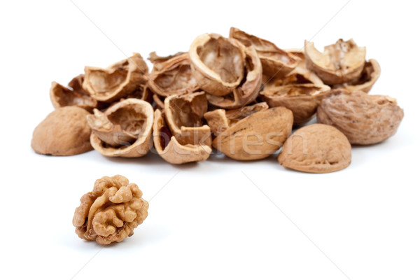 Some nutshells and walnut kernel Stock photo © digitalr