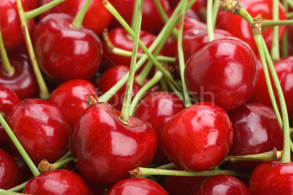 Red cherries Stock photo © digitalr