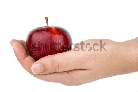 Red apple lie in palm Stock photo © digitalr