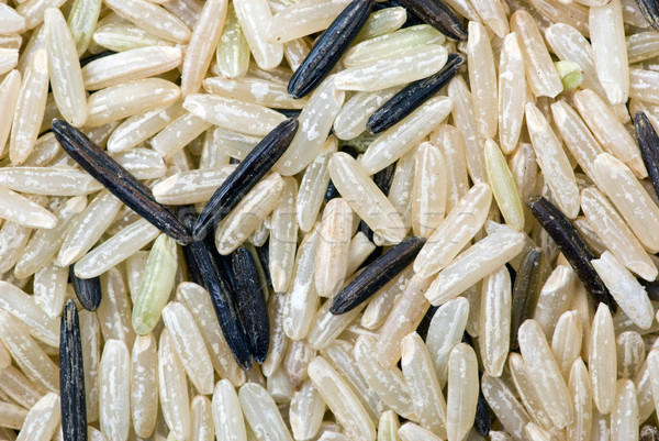 White and black uncultivated rice (macro) Stock photo © digitalr