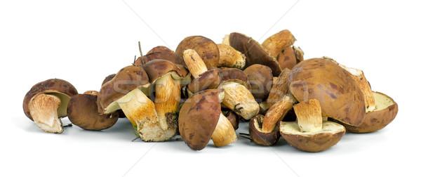 Small pile of yellow boletus mushrooms near.  Stock photo © digitalr