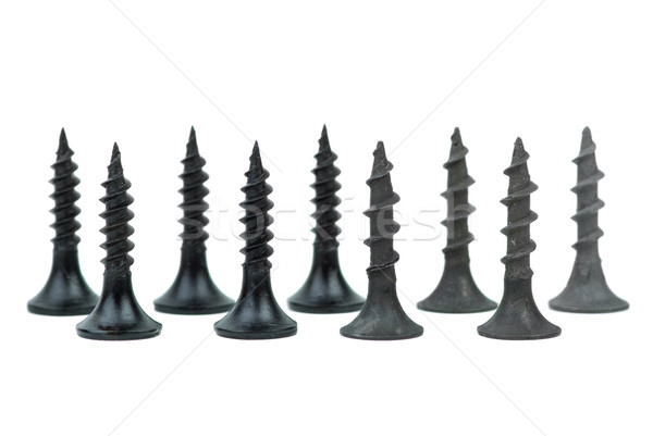 Few standing metal and wood screws Stock photo © digitalr