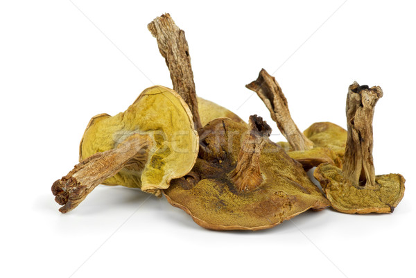 Few dried cepe mushrooms Stock photo © digitalr