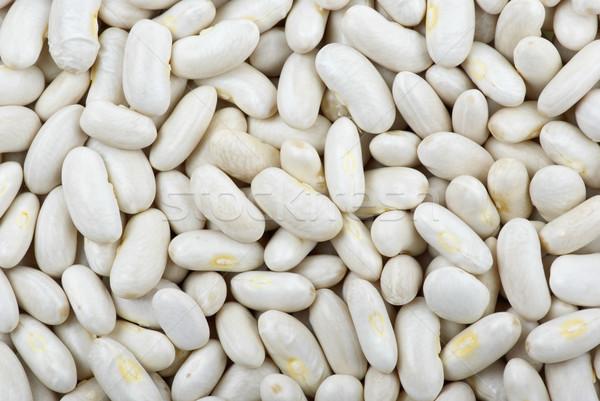 Long white haricot beans Stock photo © digitalr