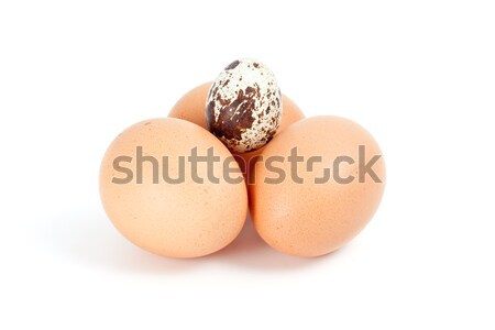 Few hen eggs and one quail egg on top Stock photo © digitalr