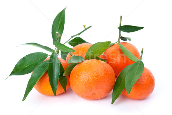 Some fresh mandarines with leaves Stock photo © digitalr