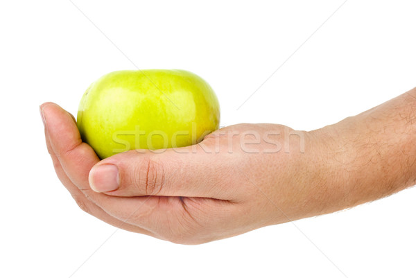 Green apple in hand Stock photo © digitalr
