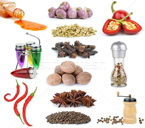 Set of different spices and condiments Stock photo © digitalr