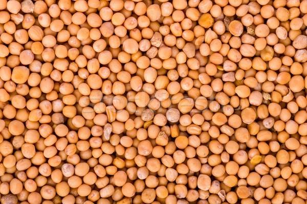 Sarı hardal tohumları gıda atış Stok fotoğraf © digitalr