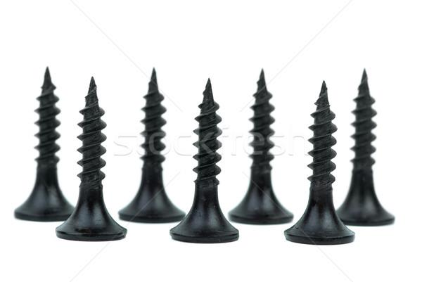 Standing metal screws Stock photo © digitalr