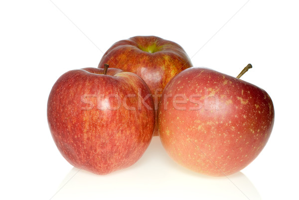 Three red apples of different breeds Stock photo © digitalr