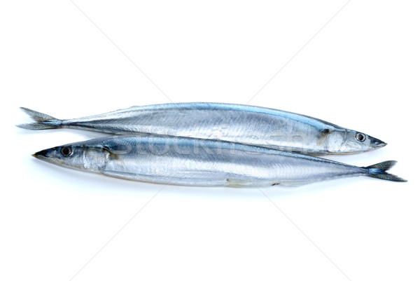 Two fresh pacific saury fishes Stock photo © digitalr