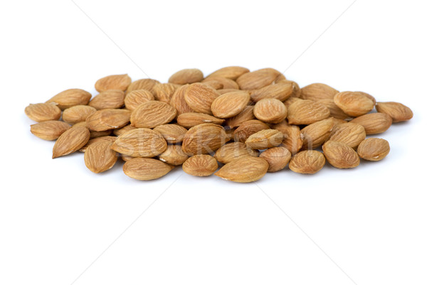 Small pile of dried-up sweet apricot  pits Stock photo © digitalr