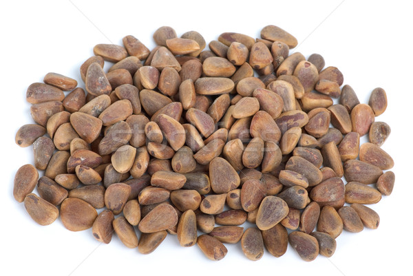 Pile of cedar nuts Stock photo © digitalr