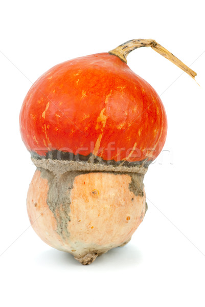 Turbante isolado branco comida vegetal fresco Foto stock © digitalr