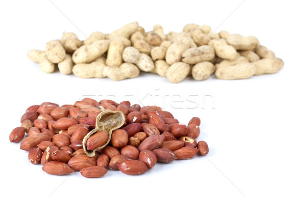 Shelled roasted peanuts and some husk Stock photo © digitalr