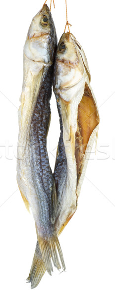 Two dried salted grey mullet fishes Stock photo © digitalr