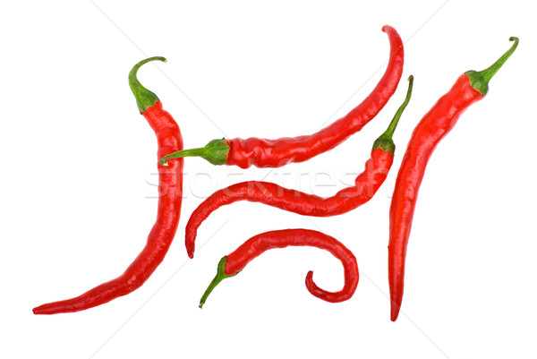 Red long curved chili peppers Stock photo © digitalr