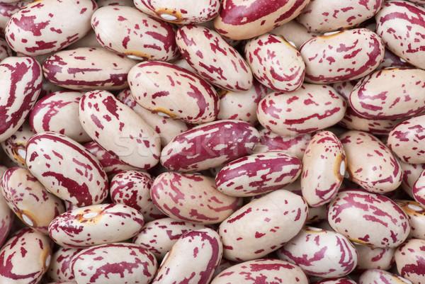 Spotty white-red haricot beans (macro) Stock photo © digitalr