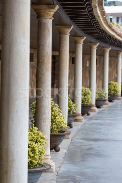 Nice columns Stock photo © digoarpi