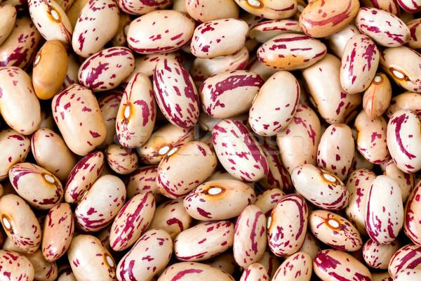 Common beans Stock photo © digoarpi