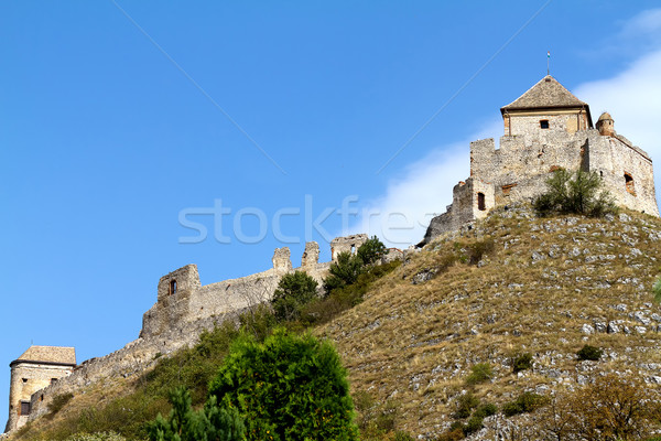 Castle  Stock photo © digoarpi