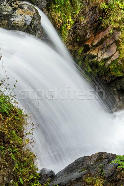 Güzel peçe şelaleler manzara bahçe yeşil Stok fotoğraf © digoarpi