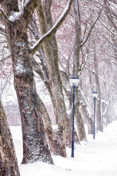 Beco dia Hungria estrada neve beleza Foto stock © digoarpi