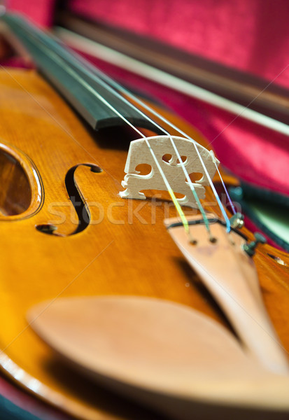 Violin Stock photo © digoarpi
