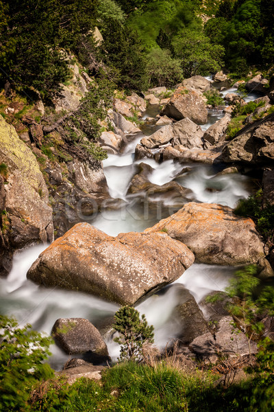 Landscape with creek from Valley of Nuria in Spain Stock photo © digoarpi