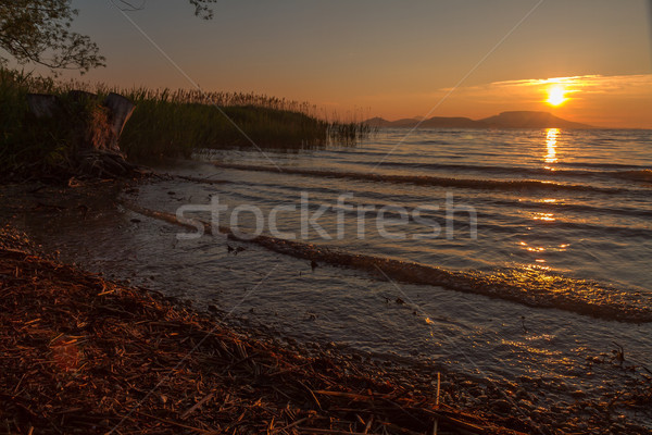 Beautiful sunrise over the lake Balaton of Hungary Stock photo © digoarpi