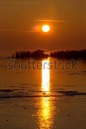 Beautiful sunset on a frozen lake Stock photo © digoarpi