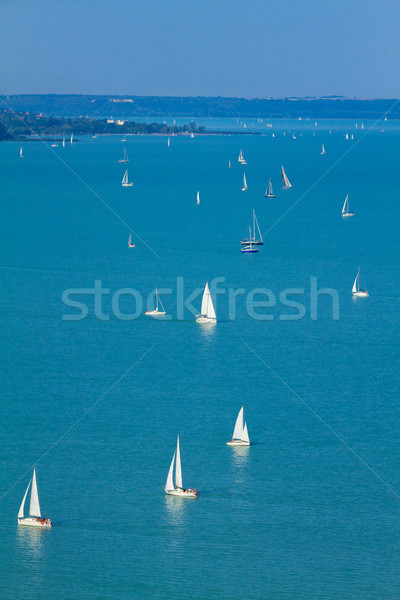 Nice Hungarian landscape from a lake Balaton Stock photo © digoarpi