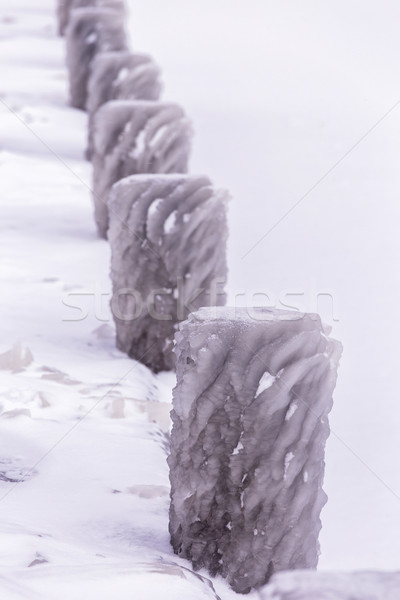 Cold winter day with many ice on the harbor on the lake Balaton  Stock photo © digoarpi