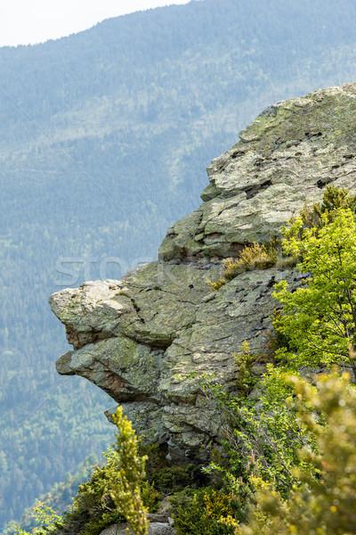 érdekes kő völgy égbolt hegy nyár Stock fotó © digoarpi