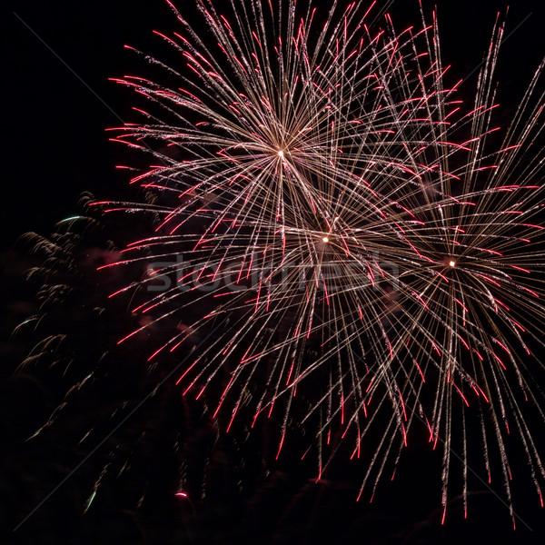 Fuochi d'artificio luce up cielo display città Foto d'archivio © digoarpi