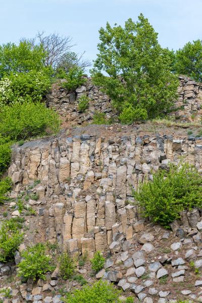 Interessante basalto Hungria árvore floresta natureza Foto stock © digoarpi